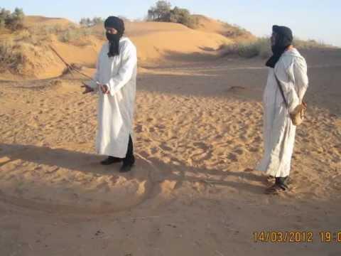 البيئة البدوية والماء في الصحراء