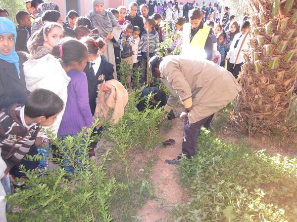 مدرسة التمور بنيابة زاكورة تحتفل باليوم العالمي لحقوق الإنسان