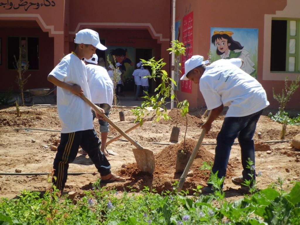 جمعية أصدقاء البيئة بزاكورة تحل بمدرسة الأنوار الإبتدائية