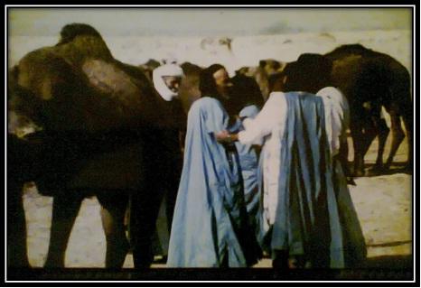 mariage-hassani-tantan-2
