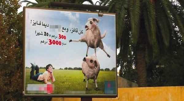 خروف العيد يرفع إقبال المغاربة على قروض الاستهلاك