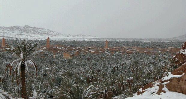 صورة لتساقط الثلج بمدينة زاكورة