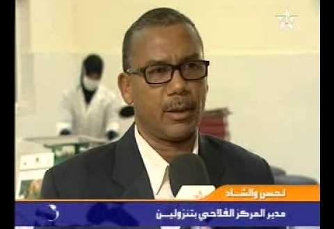 وحدات تثمين الثمور بمدينة زاكورة