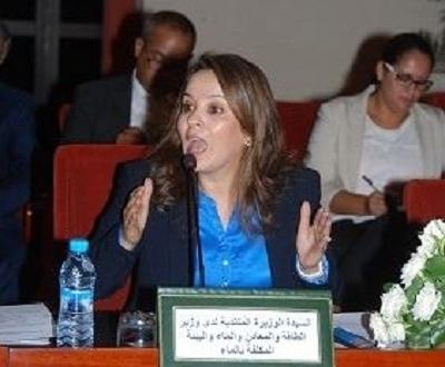 الوزيرة المنتدبة المكلفة بالماء السيدة شرفات أفيلال