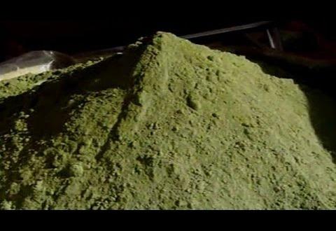 فيديو: مهرجان الحناء بتزارين نواحي زاكورة