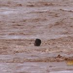 فيضانات المغرب (7)
