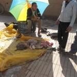 التقرير الشامل عن الوضع الكارثي جراء الأمطار بإقليم زاكورة