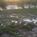 oasis de skoura  a ourzazate -5