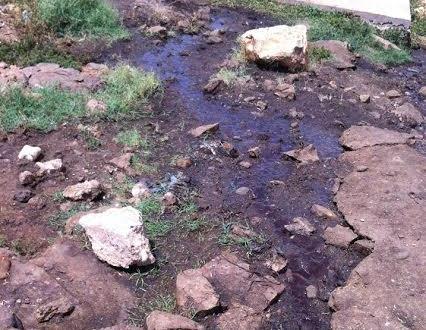 زاكورة: المجزرة الجماعية لتزارين واقع يهدد  سلامة صحة المستهلك
