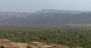 واحات المغرب ألم التوعك وأمل النجاة