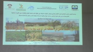 أيّة أدوار لمختلف الفاعلين في  المحافظة على الواحات المغربية والتكيف مع التغيرات المناخية -5