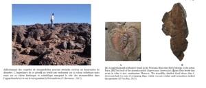 زاكورة تستقبل باحثين جيولوجين مغاربة وأجانب حول الثراث الجيولوجي 1