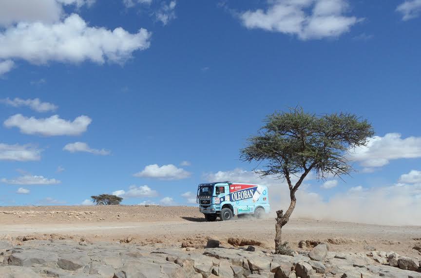 AAEZ تستنكر تدمير المجال الصحراوي وتهديد التنوع البيولوجي بحوض درعة-1
