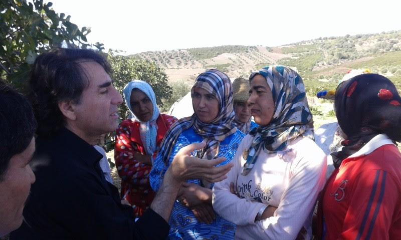 فلاحة أشجار التين المغربيّة المهددة بالخطر قد توفّر  الأمن الغذائي  للمغاربة الريفيين-2