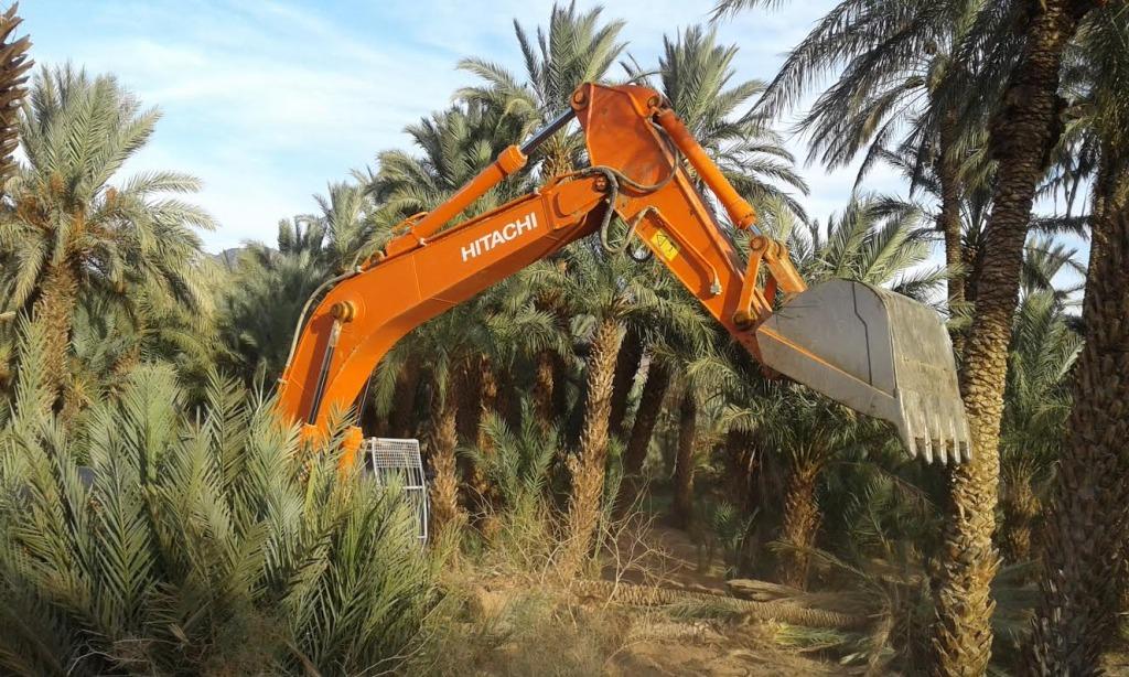 توسيع الطريق الوطنية رقم9 و اجتثاث أشجار النخيل و صمت جمعيات حماية البيئة9
