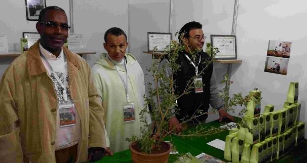 عامل إقليم زاكورة يترأس افتتاح المهرجان الدولي الرابع للحناء بتازارين-001