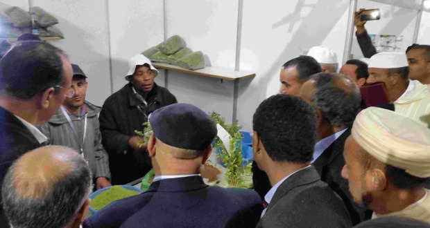 عامل إقليم زاكورة يترأس افتتاح المهرجان الدولي الرابع للحناء بتازارين-9–1