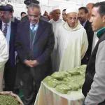 عامل إقليم زاكورة يترأس افتتاح المهرجان الدولي الرابع للحناء بتازارين-9-3