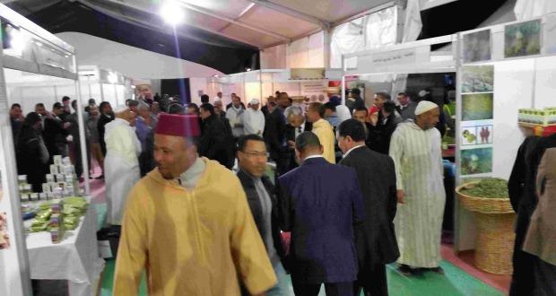 عامل إقليم زاكورة يترأس افتتاح المهرجان الدولي الرابع للحناء بتازارين-907