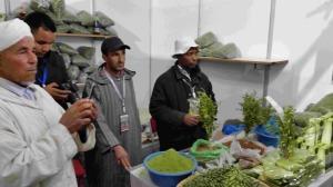 عامل إقليم زاكورة يترأس افتتاح المهرجان الدولي الرابع للحناء بتازارين02