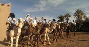امحاميد الغزلان: إنطلاق فعاليات الدورة ال 13 للمهرجان الدولي للرحل