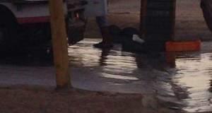 زاكورة: مواطن بتجزئة درعة 1 يشكو محلا لبيع السمك