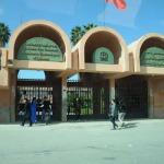 توزيع المسالك الجامعية بالنسبة للطلبة المنحدرين من الأقاليم: زاكورة ـ تنغير ووارززات