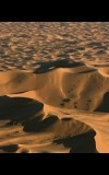 تسونامي الصّحراء