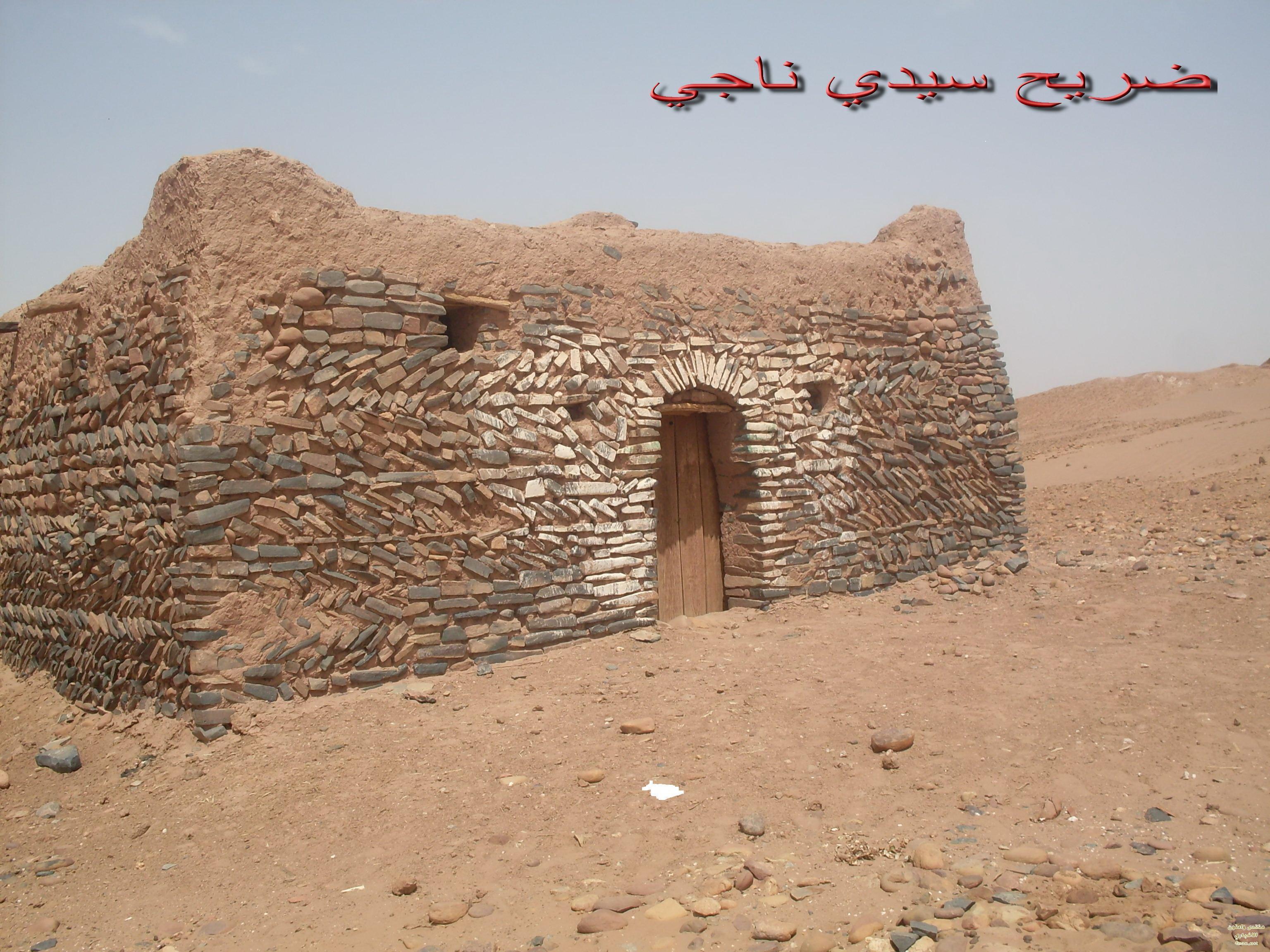 المهرجان الثقافي والسياحي بامحاميد الغزلان. زاكورة موسم  الولي الصالح سيدي ناجي 2012
