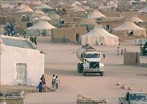 مخيمات تندوف المصدر الرئيسي لأطنان المخدرات التي تغرق منطقة الشرق الأوسط