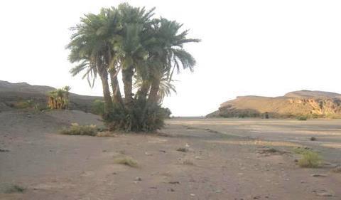 """من يقف ضد إنشاء سد """"تنزميت"""" باحصيا إقليم تنغير؟"""