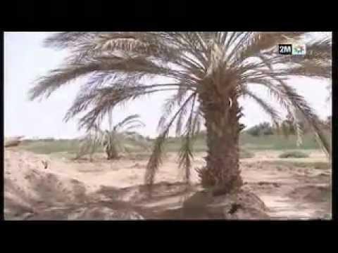 امحاميد الغزلان – جدل حول مشروع الطريق الغير مصنفة لربط دواوير المنطقة