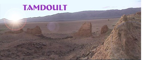 TAMDOULT-1