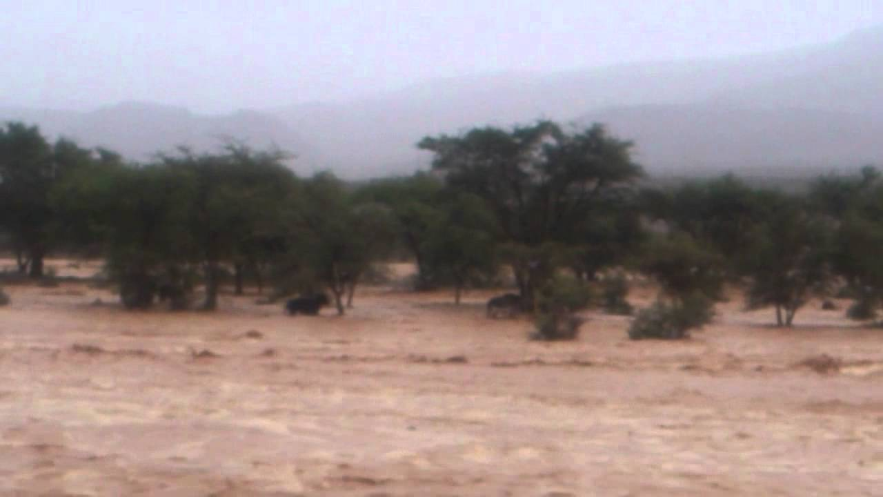 فيديو لفيضان بزاكورة