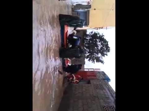 طرائف من الفيضانات