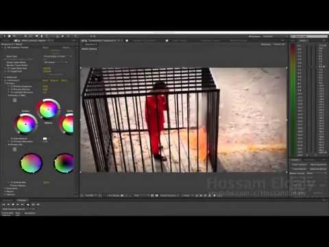 مصمم خدع بصرية يكشف حقيقة حرق داعش للطيار الأردني معاد الكساسبة