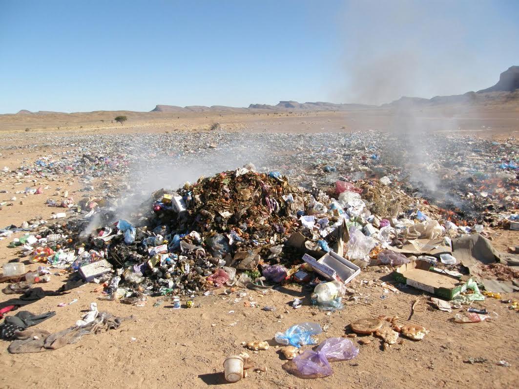 تازارين: المحافظة على البيئة مسؤولية الجميع
