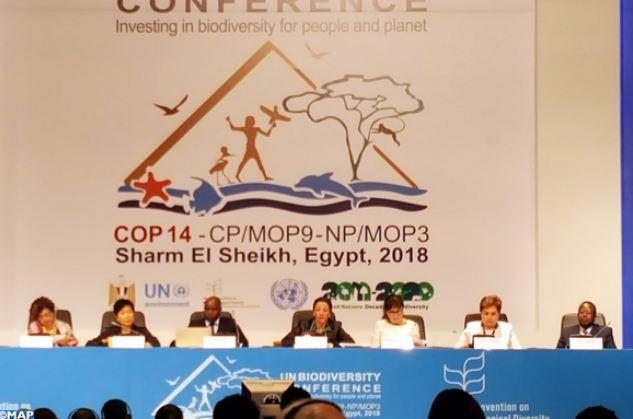 شرم الشيخ.. الاستثمار في التنوع البيولوجي رافد أساسي وحيوي للحفاظ على الموارد الطبيعية