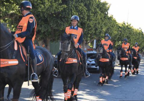فرسان الأمن الوطني يشاركون في معرض أفينيون للفروسية بفرنسا
